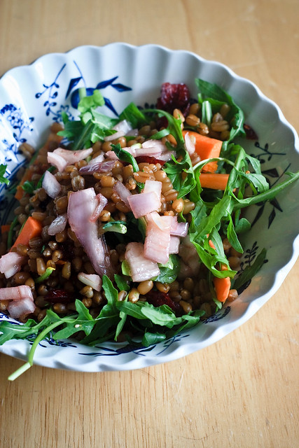Wheat Berry Citrus Salad (1 of 1)
