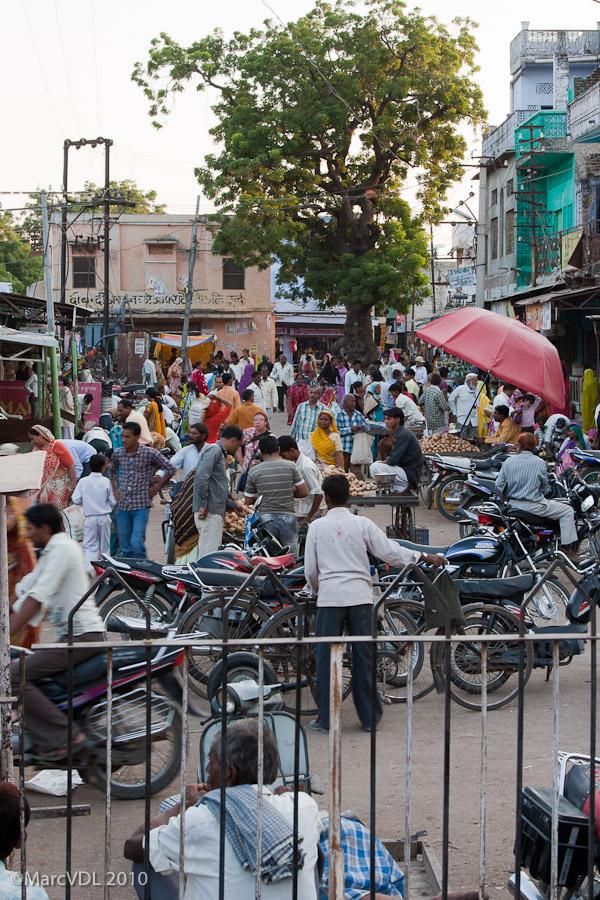 Rajasthan 2010 - Voyage au pays des Maharadjas - 2ème Partie 5598384375_6fd3e0c96a_o