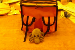 Dust Mite & orange rando bag