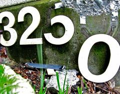 Movement (CMLBrown) Tags: 2 white 3 motion green broken grass leaves moss shadows 5 urbandecay cement growth dirt numbers detritus zero neworder cmlbrown facebookcomphotosbycmlbrown
