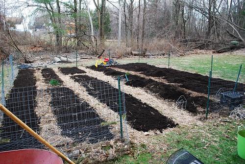 back garden 3