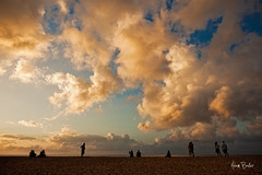 front row ([Adam Baker]) Tags: ocean sunset beach silhouette canon landscape hawaii pacific north shore tropical ehukaibeachpark 24105l adambaker 5dmkii