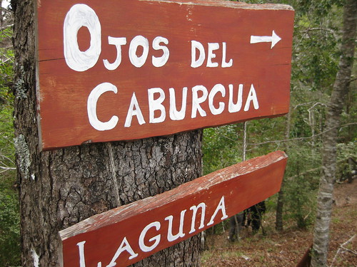 sign to the Ojos del Caburgua