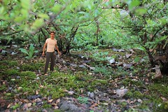 104/365 - Into the woods... (Sinuh Bravo Photography) Tags: three woods five joke fake gimp manipulation manipulacion bosque hundred tiny cinco tres 365 bushes wald sixty bois witz broma falso blague sesenta arbustos falsch threehundredsixtyfive cientos trescientossesentaycinco