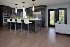 Maple Greystone [kitchen]
