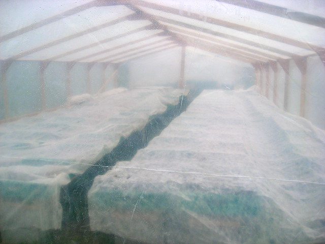 Greenhouse Goes To Bed