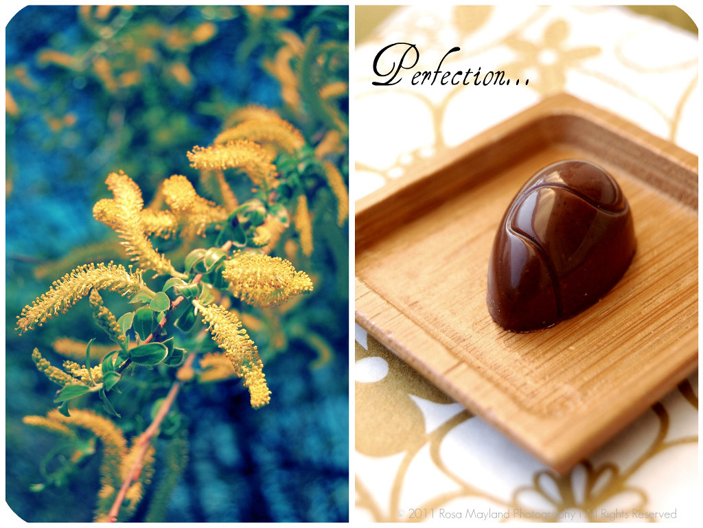 Easter Chocolates Picnik collage 6 bis