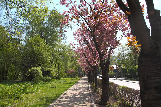 Kurpromenade mit Japanischer Kirche