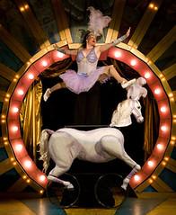 circus-pony