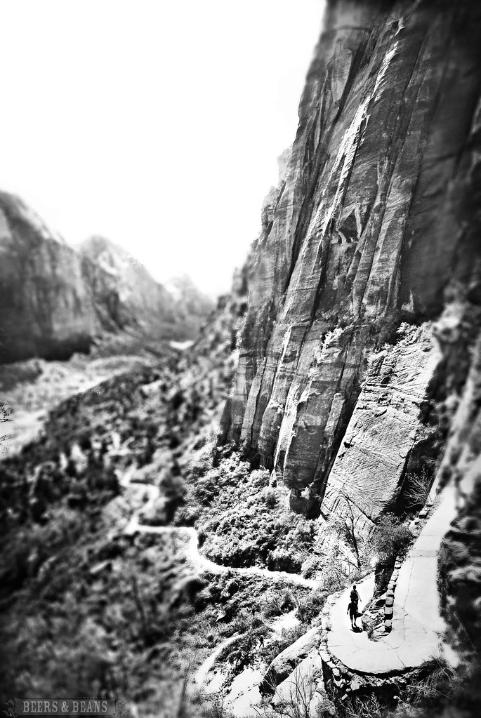 Angels Landing - Zion National Park in Black & White
