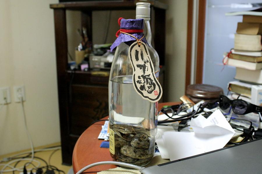 Snake wine(1)