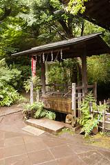At Ueno Park