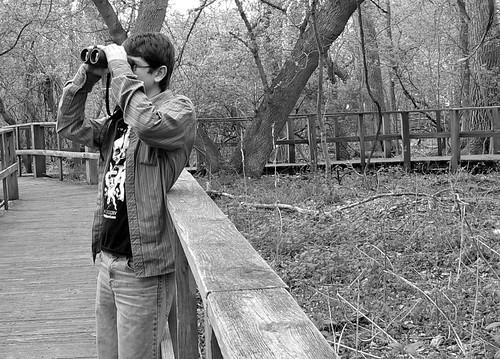 Dakota birding