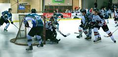 _IMG7311 (timhughes) Tags: hockey pentax bears icehockey knights canberra act aihl k7 2011