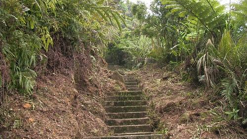 皇帝殿登山步道_03_一路都是向上爬_2011_05_07