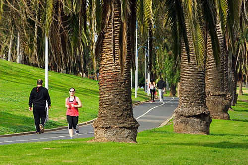 Maribyrnong River Loop Walk, Essendon, Victoria, Australia IMG_2321_Maribyrnong_River