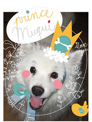 muqui prince of whites (genie espinosa (trouvezlelapin)) Tags: portrait dog custom vector