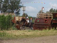 SGW 2011 011
