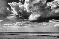Se acerca la tormenta. (rmfly) Tags: tormenta playa mallorca sescovetes blancoynegro nubes sky mar verde salvaje otoo