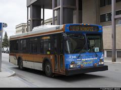 Winnipeg Transit #946 (vb5215's Transportation Gallery) Tags: winnipeg transit 2001 new flyer d30lf