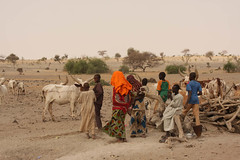 West Africa-5385