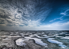 Desert Of The Sea (Andre Luu) Tags: seascape landscape fineart vietnam lowtide hochiminhcity waterreflection superwideangle seabed seatexture cangio bestlandscape sealandscape sandtexture cloudpattern wildbeach colorphotoaward groundtexture toplandscape oceanlandscape bestcomposition musselpicking sal1635z sonya850 zeisszavariosonnart1635mm zeiss1635za