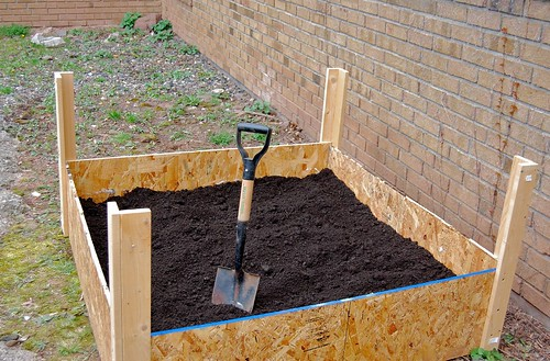 raised garden planting bed