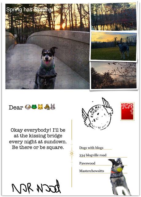 My postcard