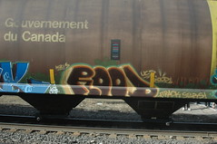 Rood (A & P Bench) Tags: car train bench graffiti pacific stock canadian graff railfan freight rolling rollingstock fr8 benching