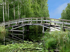 Nedingen - Small Wooden Bridge (Olof S) Tags: bridge wallpaper lake reflection tree green nature water field grass rural forest canon landscape photography landscapes countryside is photo wooden construction scenery europe view sweden schweden small country scenic swedish powershot vegetation environment nordic birch sverige pastoral scandinavia paysage landschaft paesaggio suede suecia landskap manzara svezia szwecja sdermanland a710 trbro 710is nedingen