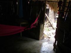 - Hamaca en Coba (spartan_puma) Tags: mexico coba yucatan hut mayan choza hamaca quintanaroo