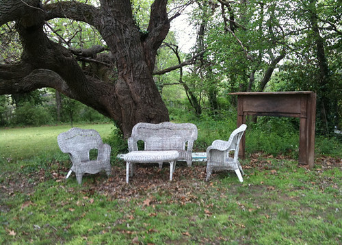 Creepy Seating area under a 100+ year old tree