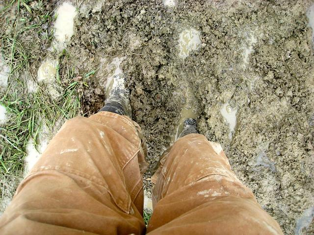 Mud Part I