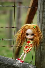 Hangin' at the Farm