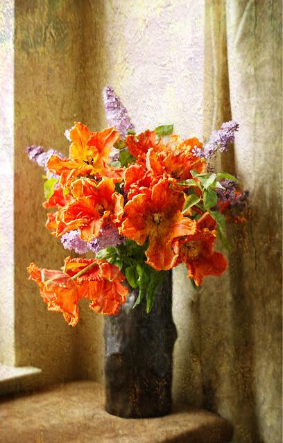 stilllifepoppies&lilacs