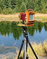 Large Format in the Tetons (bhophotos) Tags: camera travel trees usa reflection film water geotagged nikon tripod wyoming nikkor tetons largeformat jacksonhole grandtetonnationalpark gtnp schwabacherslanding d700 2470mmf28g