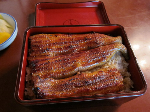 小島屋(鰻)