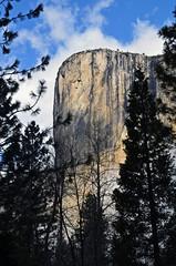 YNP050 (Larry Mendelsohn) Tags: california landscape nikon scenic yosemite d7000 nikon1685