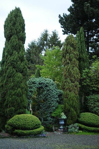Topiary and arch - different shades of green, bushes, trees, Blue Ridge, Seattle, Washington, USA by Wonderlane