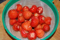 11 06 26_fruits_0003