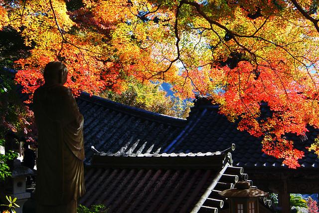 20101119_105721_長谷寺_登廊