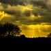 The sun streaks at Islandhill