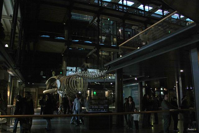 C'est un superbe espace d'exposition