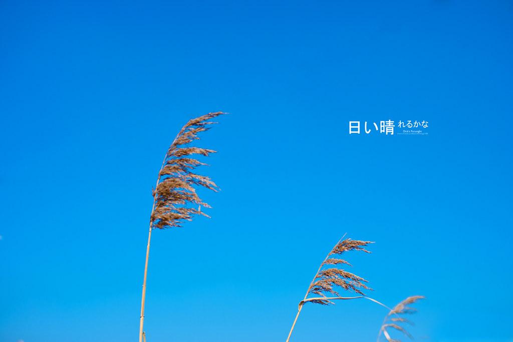 +日い晴れるかな+