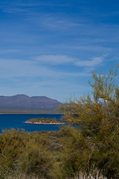 Tonto National Forest and Roosevelt Lake
