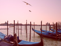 something that will never come back (elsmine) Tags: venice winter light italy sadness laguna melancholy venezia