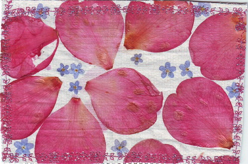 Flower Postcard 2