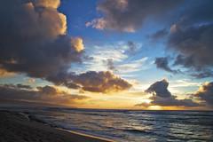 [フリー画像] 自然・風景, 海, ビーチ・砂浜, 夕日・夕焼け・日没, アメリカ合衆国, ハワイ州, 201104141900