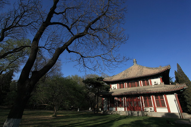 Spring scenery in Peking Universtiy