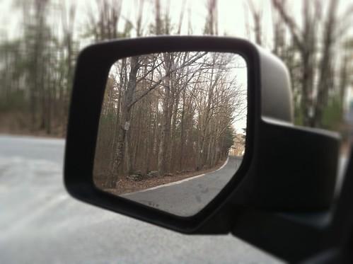 [101/365] Side Mirror